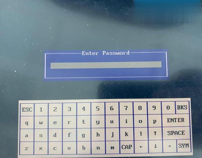 Piwis-Iii-Password-2 (2)